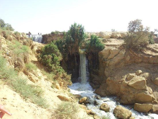 2-30-OASIS-DE-AL-FAYUM-METIRTA.ONLINE