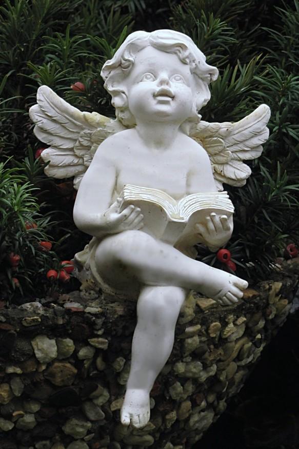 angel36-metirta.online.jpg