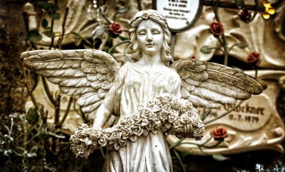 angel41-metirta.online
