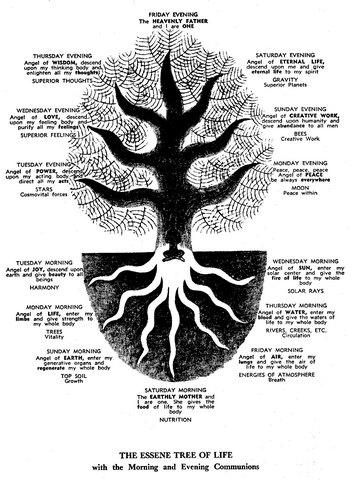 37-Árbol de la Vida Esenio