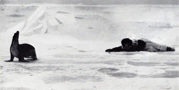 101-cazador esquimal-metirta