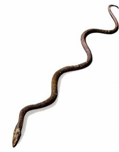 2-serpiente-de-bronce-metirta.online