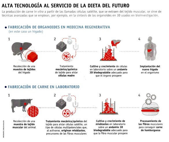 4-Tecnología dietética.metirta.online