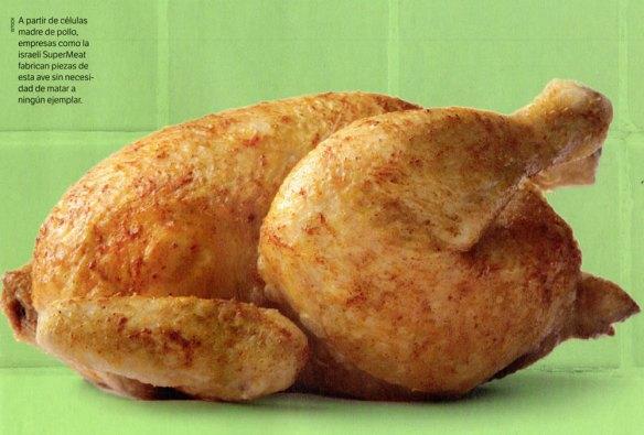5-Pollo con células madre.metirta.online