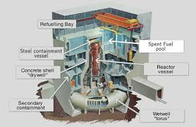 7-Reactor nuclear Fukushima