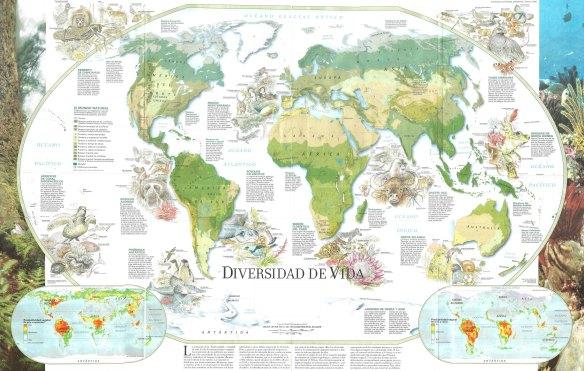 DIVERSIDAD DE VIDA-1-metirta.online