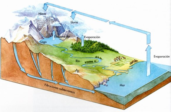 1-El ciclo del agua.metirta.online