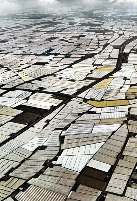 3-Agricultura industrial.metirta.online
