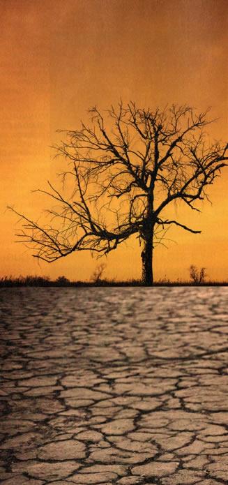 5-Sequía.metirta.online