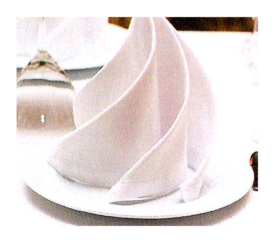 4-Colocación de servilleta.metirta.online