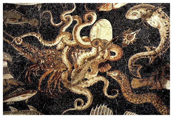 5-Fauna marina Pompeya.metirta.online