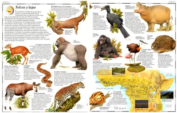 22-Selvas y lagos de África