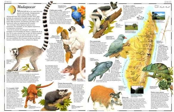 44-Madagascar isla de África