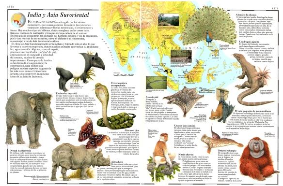 55-India y Asia Suroriental.metirta